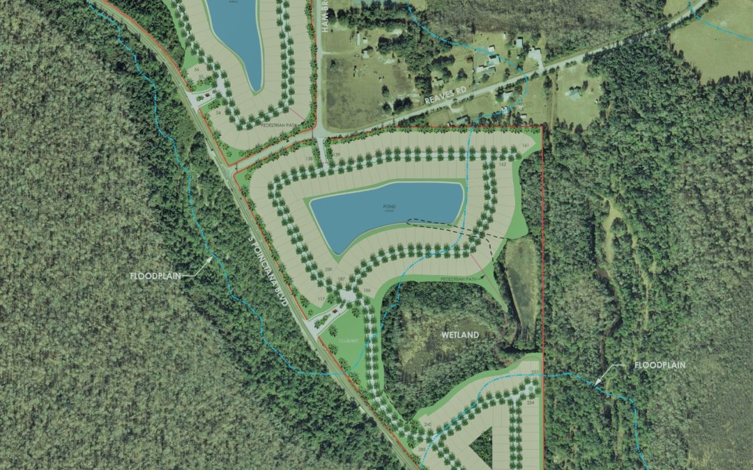 Reedy Reserve, Osceola County FL