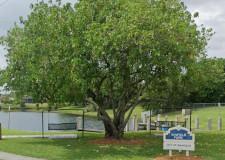 Winfield Park Improvements